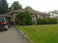 Three plus One Bedroom Bungalow for Rent Yonge/Finch