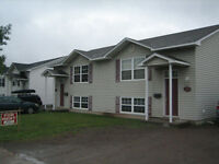 Modern 3 Bedroom Duplex 5 mins from downtown Moncton