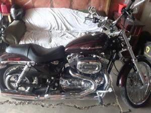 Harley Davidson sportster 1200 custome