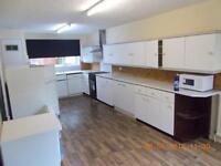 4 bedroom house in MONDAY CRESCENT ARTHURS HILL (MONDA11)
