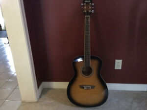 Acoustic Guitar and accessories