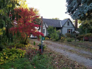 close to niagara college niagara on the lake,3 bedrooms for rent
