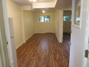 Newly Renovated one bedroom basement suite in Porter Creek