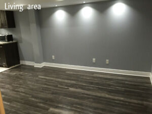 Newly built basement for rent with separate laundry room