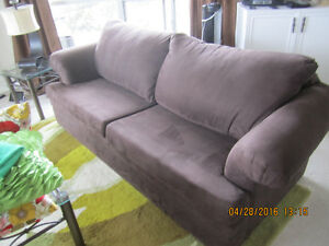 Lush Luxurious Brown Couch