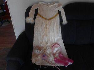 velour princess gown