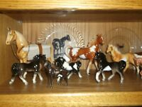 Horses and Dogs beautiful collection