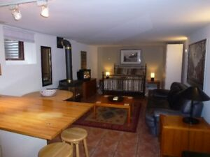 DOWNTOWN studio bachelor basement available MAY 15, furnished
