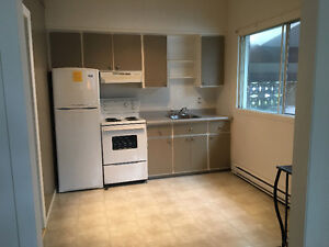 Large studio Ste Anne close to Abbott and McGill