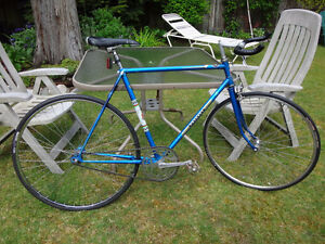 Fixy single speed road bike