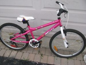 Young Ladies Bicycle