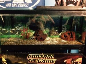 80 gallon fish tank/aquarium