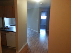 Spacious 1 bedroom + den 950$ a month December FREE