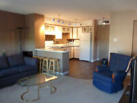 Downtown Furnished 2 bedroom Condo for rent