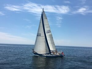 Peterson 34 for sale