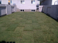 Landscaping - Post Holes - Good Work, Fair and Affordable