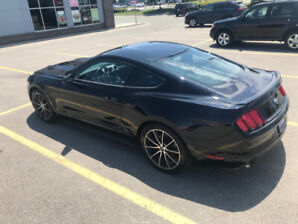 2015 Ford Mustang Ecoboost w/ Wheels and Stripes Package