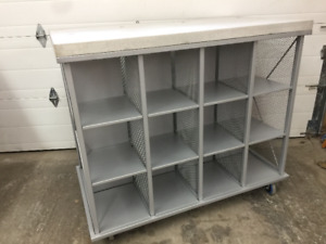 For sale two rolling display / storage racks