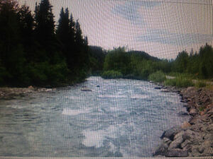 LOT ( 22 ) FOR SALE ,DEASE LAKE BC.