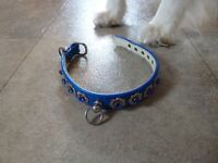 Jewelled dog collar - blue, fits puppy or small dog, very sturdy