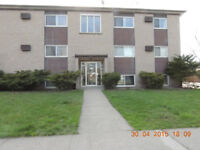 Help needed for renovation in Niagara Falls and Welland