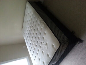 Double bed, Mattress, Box spring, and Metal frame $250 obo