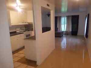 Remodeled Trailer on Golf Course for sale