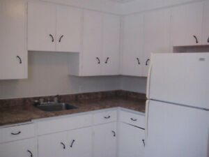 Bachelor Apartment located in the middle of the city. Bus Routes
