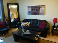 DOWNTOWN chic condo, available JULY 1st, fully furnished