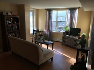 One bedroom in two bedroom apartment, south end Halifax