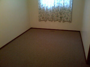 North West Edmonton 2 bedrooms Basement Suite for rent Edmonton Edmonton Area image 3