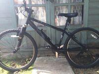 Raleigh Fargo mountain bike