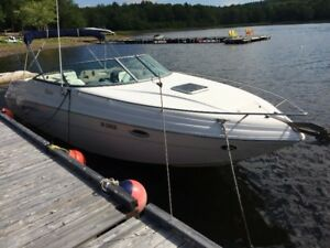 2003, Rinker 282, 496 Mag. Mercrusier