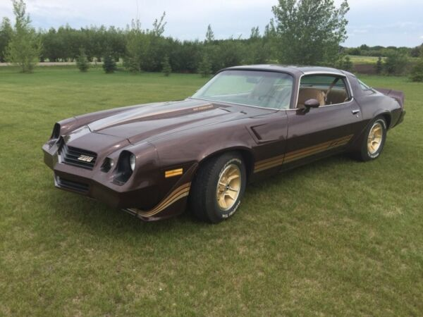 1981 z28 for sale canada. Black Bedroom Furniture Sets. Home Design Ideas