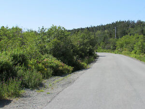 155-161 COUNTRY PATH ROAD - LONG POND, CBS St. John's Newfoundland image 18