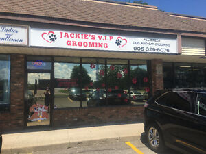 Looking to hire an experienced pet groomer