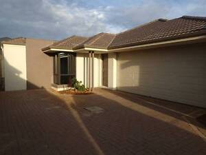 Beautiful Family Home Seville Grove Armadale Area Preview