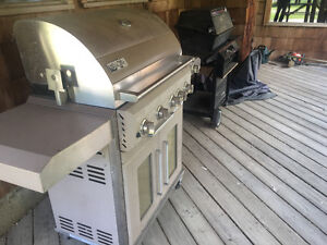 Propane and Natural Gas Barbeque