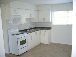 Ground floor suite for rent
