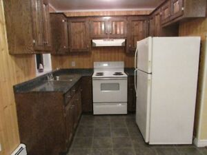 2 bedroom apartment for rent in Glace Bay.