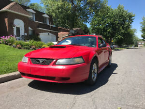 Ford Mustang 2003 | Manual | Only 174 000km