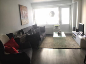 1 bedroom apartment available for summer sublet (May 1-Aug 31)