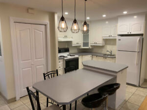 FULLY RENOVATED - SEMI-FURNISHED 4 1/2 Townhouse in Downtown
