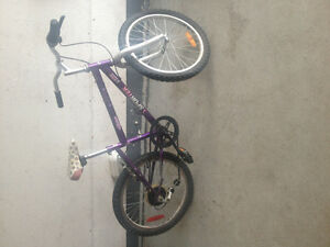 Girls 20 inch bike