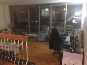 Near York University Room for Rent