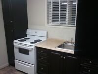 U of A 2 Bdrm Bsmt Suite - Lots of Light - Walk to Campus!
