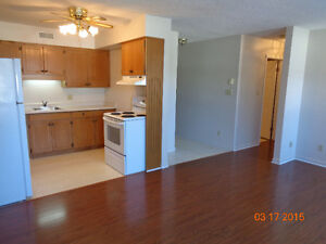 Cozy 2 bedroom in Clinton Stratford Kitchener Area image 6
