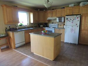 Looking for a Roommate - 3 Bed. Duplex, Moncton North, All Incl.