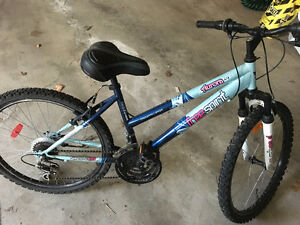 Awesome FreeSpirit Girls Mountain Bike