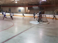 ScarboroughTues night ball hockey team needs players!!